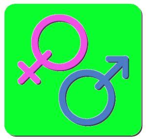 Transgender literature review book